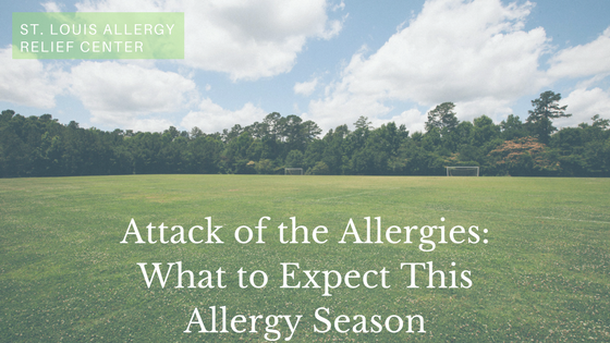 Allergy Season: What to Expect From Your Allergies This Spring