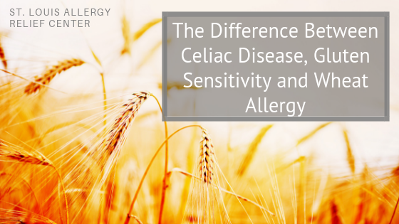 Celiac, Gluten and Wheat Allergies