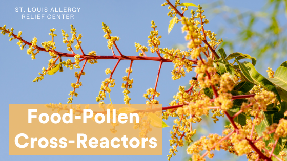 Food-Pollen Cross-Reactors